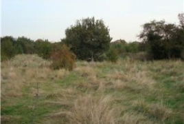 land for sale, sheerness